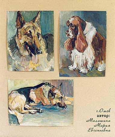 Собаки и особенно моя собака породы